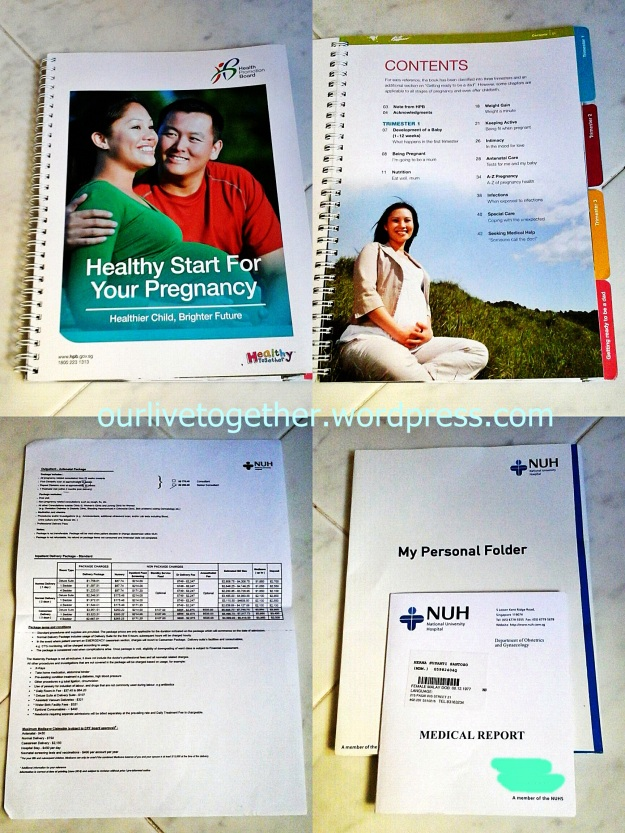 Pregnancy related brochure